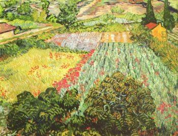 Vincent van Gogh, Klaproosveld, 1888