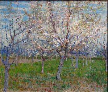Vincent van Gogh, Bloeiende fruittuin (de roze boomgaard), 1888