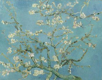 Vincent van Gogh, Amandelbloesem, 1890