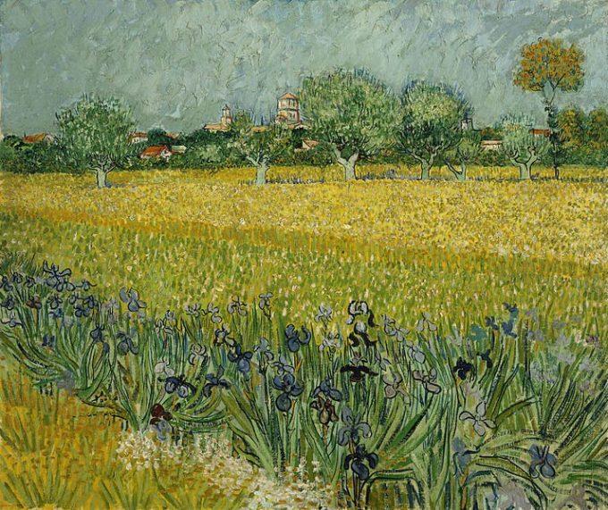 Vincent van Gogh, Veld met bloemen bij Arles, 1888