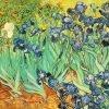 Vincent van Gogh, Irissen, 1889