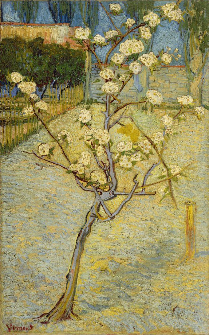 Perenboompje in bloei, Vincent van Gogh, 1888