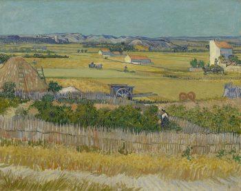 Vincent van Gogh, De oogst (La moisson), 1888