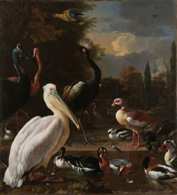 Een pelikaan en ander gevogelte bij een waterbassin, bekend als 'Het drijvend veertje', Melchior d'Hondecoeter, ca. 1680