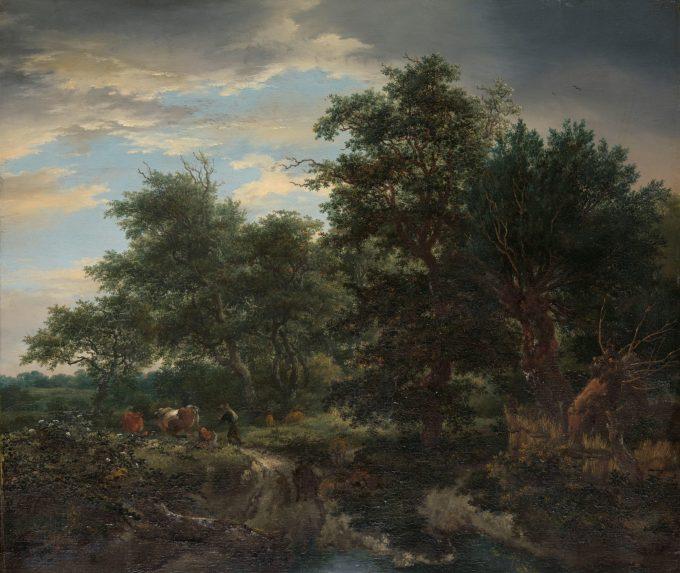 Bosgezicht, Jacob Isaacksz. van Ruisdael, 1653