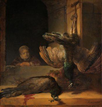 Stilleven met pauwen, Rembrandt van Rijn, ca. 1639