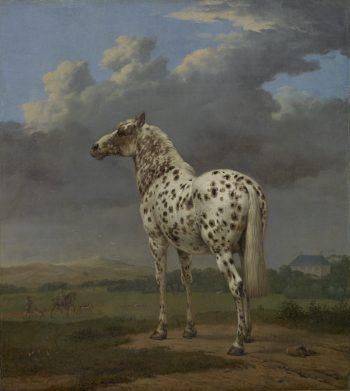 Bontgevlekte hengst in een heuvellandschap, Paulus Potter, 1652