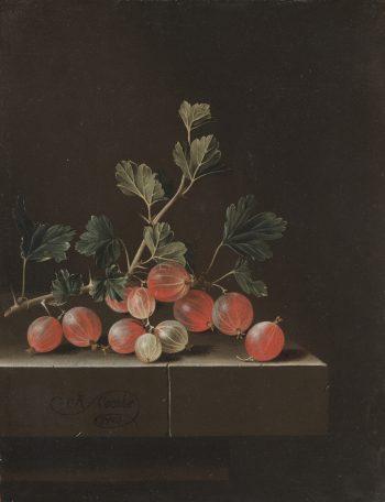 Kruisbessen op een tafel, Adriaen Coorte, 1701